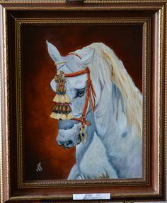 48. Ló Trilógia Fehér