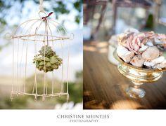 Fynbos Bouquets, Wedding Ideas, Table Decorations, Garden, Flowers, Photography, Inspiration, Home Decor, Biblical Inspiration
