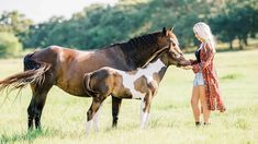 Kirstie Marie Jones of Kirstie Marie Photography caught up with Erin Bradshaw Weiss for an exclusive interview and photoshoot for COWGIRL Magazine... Erin Bradshaw, Western Pleasure Horses, Cowgirl And Horse, Reality Tv Stars, Horse World, Busy Life, Cowgirls, Country Music, Equestrian