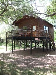 Bonamanzi Tree House and Tree Lodge offers 2 bedded tree houses and 4 bedded family units, all air-conditioned and complete with en-suite bathrooms, fully equipped kitchen, barbeque area and verandas. Family Units, Game Reserve, Treehouses, Lodges, South Africa, Gazebo, Safari, Road Trip, Outdoor Structures