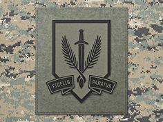 P4v warriorpatch