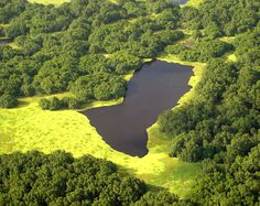 Reserva Biológica do Lago Piratuba, localizada no estado do Amapá,