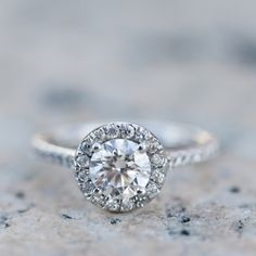 Round diamond | Scalloped halo pave platinum setting | Photo by www..com