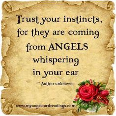 Trust your instincts.... Decir No, Real Angels, Angels Among Us, Angel Of Protection, Angel Sayings, Guardian Angel Quotes, Heavenly Angels, Angels In Heaven, Gardian Angel