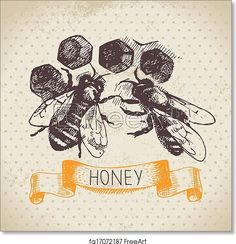 Honey background with hand drawn sketch illustration - Artwork - Art Print from FreeArt.com