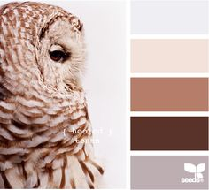 hooted tones: Neutral colors. ~W