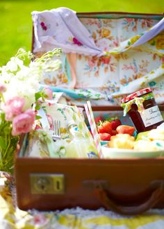 :)LOVE THIS PICNIC IDEA.  have suite cases and have had this idea before but they are dirty and old so I could recover the inside for this use.