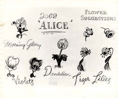 Vintage Disney Alice in Wonderland: Animation Model Sheet 350-8018 - Flower Suggestions for Morning Glory, Violets, Dandelion, Tiger Lilies