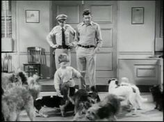 Barney Fife: A dog can't get struck by lightning. you know why? 'Cause he's too close to the ground. See, lightning strikes tall things. Now if they were giraffes out there in the field, now then we'd have trouble.