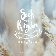 """So don't worry about these things, saying, """"What will we eat? What will we drink? What will we wear?' These things dominate the thoughts of unbelievers, but your heavenly Father already knows all your needs. Seek the Kingdom of God above all else, and live righteously, and He will give you everything you need. Matthew 6:31-33"""