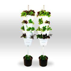 Magic Tower Vertical Garden 2 Tower Organic Vegetable, Herb, Fruit Garden Magic Tower,http://www.amazon.com/dp/B00FKZ0488/ref=cm_sw_r_pi_dp_B39wtb0M21AR424V