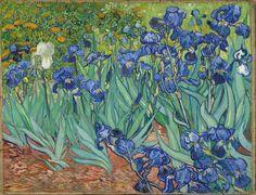1889, Irises, Vincent Van Gogh