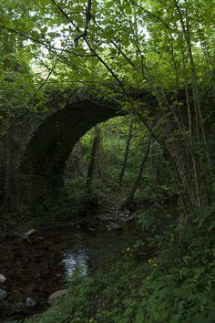 D'entre tots els ponts que s'han alçat per saltar l'aigua de Viladrau, el pont de Can Pau Moliner té una bellesa estranya a causa de la vegetació que se l'ha anat empassant. El Pont es va construir al segle XVI, i era el un pont traginer que utilitzaven per anar de Viladrau a Vic i evitar la Riera Major, la més gran de Viladrau.