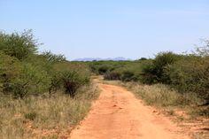 Game drive in the Okonjima Nature Reserve, Namibia. www.africat.org