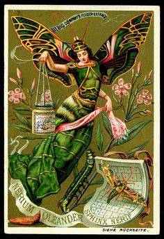 1890. Butterfly Girl (No. 6) trading card issued by Liebig Extract of Beef Company.  S265.