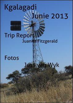 Kgalagadi 2013  Kgalagadi Transfrontier Park Wind Turbine, Places To Visit, Vans, Travel, Voyage, Trips, Viajes, Destinations, Van
