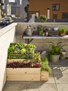 Urban Garden Design 7 Expert Tips for Rooftop Gardening Diy Garden, Garden Boxes, Terrace Garden, Edible Garden, Lawn And Garden, Garden Projects, Garden Landscaping, Landscaping Ideas, Garden Web