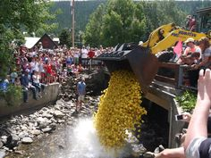Crested Butte duck race