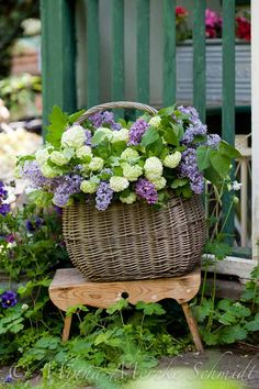 Container gardening is a fun way to add to the visual attraction of your home. You can use the terrific suggestions given here to start improving your garden or begin a new one today. Your garden is certain to bring you great satisfac Indoor Gardening Supplies, Container Gardening, Beautiful Gardens, Beautiful Flowers, Old Baskets, Deco Floral, Visual Display, My Secret Garden, Flower Basket
