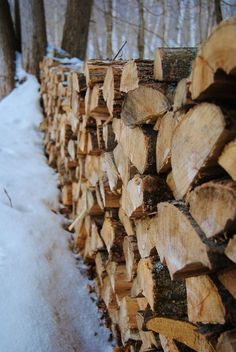 Winter in the woods.Stacked and drying for next years' burn. I Love Winter, Winter Fun, Winter Time, Winter Christmas, Winter Snow, Winter Cabin, Cozy Cabin, Snow Cabin, Hot Apple Cider
