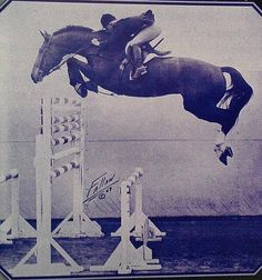 Fleet Apple and DiAnn Langer Fleet Apple was another wonderful example of an off the track thoroughbred. Langer recalls the photo was taken in 1969 she was 22 and Fleet Apple 10. They were competing in a fault-and-out class at the old Indio showgrounds. photo: Fallaw
