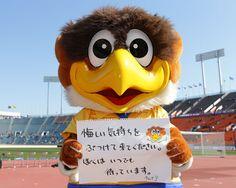 [ FUJI XEROX SUPER CUP:広島 vs 柏 ] 「悔しい気持ちをぶつけてきてください。ぼくはいつでも待っています。チャオ!」  (どこかで聞いたようなセリフですが…以上です)  どうやらJリーグマスコットの皆さんへのメッセージだったようですね。ベガッ太貫禄のコメントでした!  ★「FUJI XEROX SUPER CUP 2013特集」グルメ&ゆるキャラ&もちろん真剣勝負も!  2013年2月23日(土):国立競技場