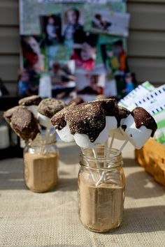 S'mores Pops, camping themed party. Made with vegan marshmallows and chocolate!