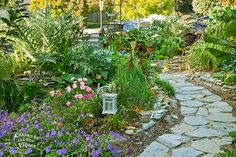 Permaculture Garden designed by Larry Santoyo of Earthflow Design Works. Permaculture design, a movement founded by Bill Mollison & David Holmgren, recreates systems from nature allowing each element to contribute to the success of the whole. Los Angeles, California, USA