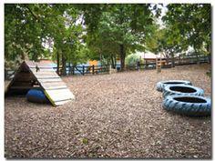 Misty Pines Dog Park