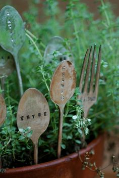 """Plant Markers I'd like to make. Except I dont have a green thumb so mine would say something like, """"Grow Dangit"""""""
