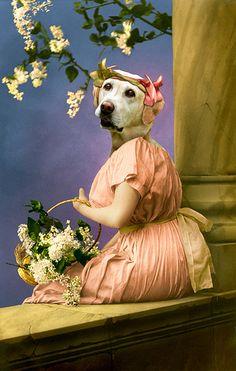 The pretty gardener - Martine Roch - Anthropomorphic dog portrait