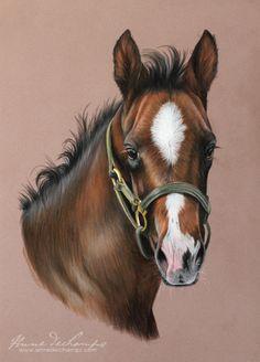 Diligente Choisi Pastel Art, Horses, Animals, Animales, Animaux, Animal, Animais, Horse