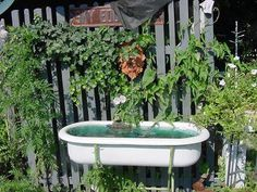Bathtub Fountain, so many great uses!  I have one in my garden spilling over with Ivy and statuary.  These are great with ice and drinks for parties...vintage weddings etc.  I have 2 available at American Home & Garden in Ventura CA