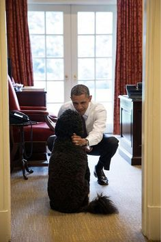 POTUS greets Bo. The follow up photo, by popular demand. By Pete Souza.