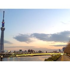 (Made with #NoCrop) #桜橋  #Tokyo #skytree #隅田川