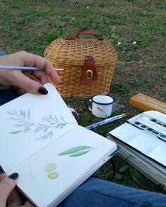 """""""Mi piace"""": 20, commenti: 3 - Sara (@sarapetitchou) su Instagram: """"Accenni di un timido autunno che tarda ad arrivare, le tenere olive sono pronte per la raccolta,…"""""""