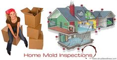 Before moving into a new home, always test with mold plates.