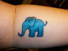 elefante checacchio