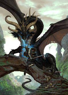 Matthew Stawicki dragon