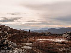 Hiking in Veggelifjell, Norway sept Norway, Hiking, Mountains, Nature, Travel, Walks, Naturaleza, Viajes, Destinations