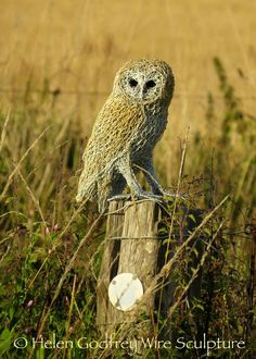 My Owl Barn: Amazing Wire Sculptures by Helen Godfrey