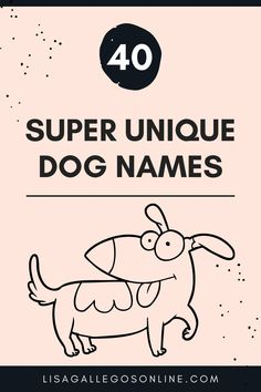 A list of unique dog names I've come across as a Certified Professional Dog Trainer. There are more name ideas if you scroll down to the video at the very bottom! Dog Names Unique, Great Names, Puppies Tips, Gsd Puppies, Japanese Food Names, All Dogs, Best Dogs, Name Suggestions, Dog Nutrition