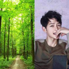 AvatarLA&KPOP // Earth // Song Joongki