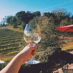 Wineries on the Russian River in  Sonoma