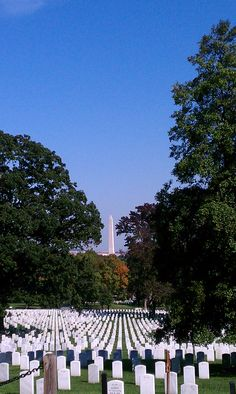 Arlington National Cemetery / Washington Monument