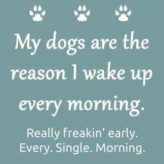 My dogs are the reason I get up early