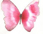 two tone pink striped butterfly