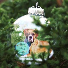 Create holiday ornaments using your favorite photos.