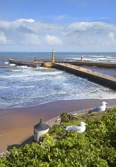 yorkshire, whitby pier, a favourite walk along the pier, look back and a lovely view of the coast, then look at the sea. East Yorkshire, Yorkshire England, Yorkshire Dales, England Ireland, England And Scotland, British Seaside, British Isles, Northern England, Nature