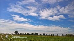 free download  Sky with rural background 17922   Textures - BACKGROUNDS & LANDSCAPES - SKY & CLOUDS   Sketchuptexture